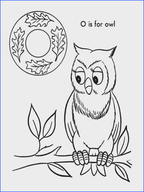 ABC Coloring Sheets ABC Owl Animals coloring page sheets Alphabet Letter O is for Owl
