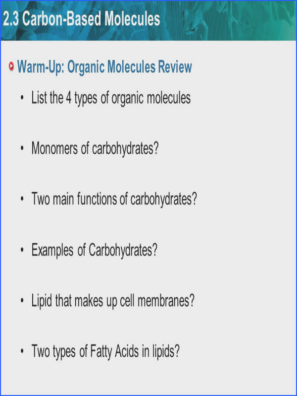 Warm Up Organic Molecules Review