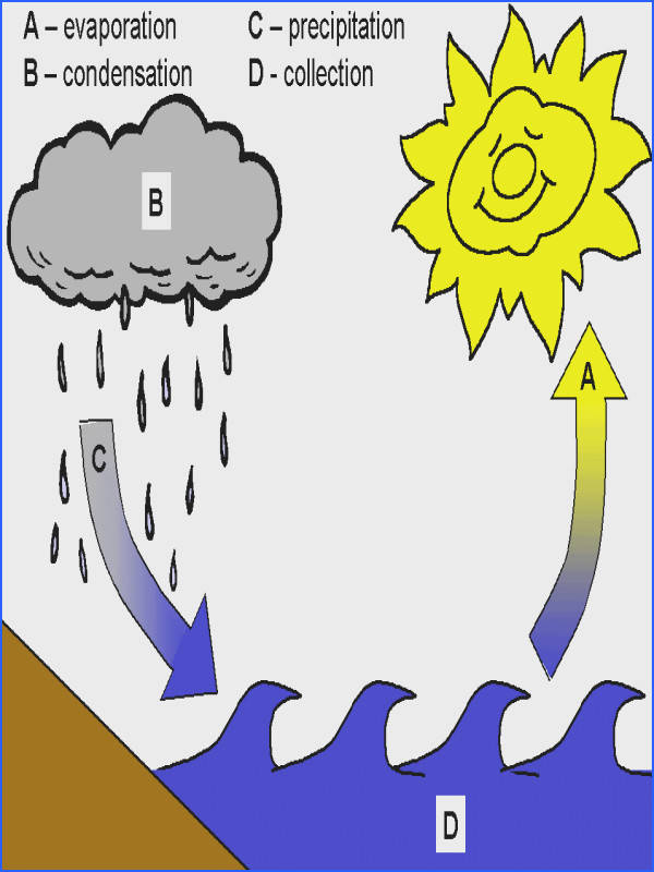 """The water cycle explained simply with a few easy experiments to do Fun printables to go along with the unit too Adding a """"rain"""" poem to go along with"""