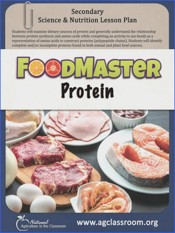Lesson plan for students to examine tary sources of protein understand protein synthesis and plete