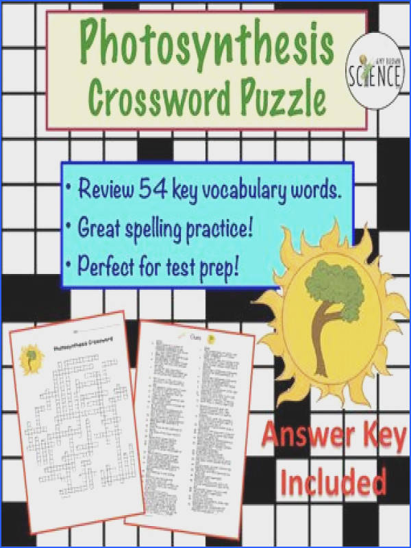synthesis Crossword Puzzle