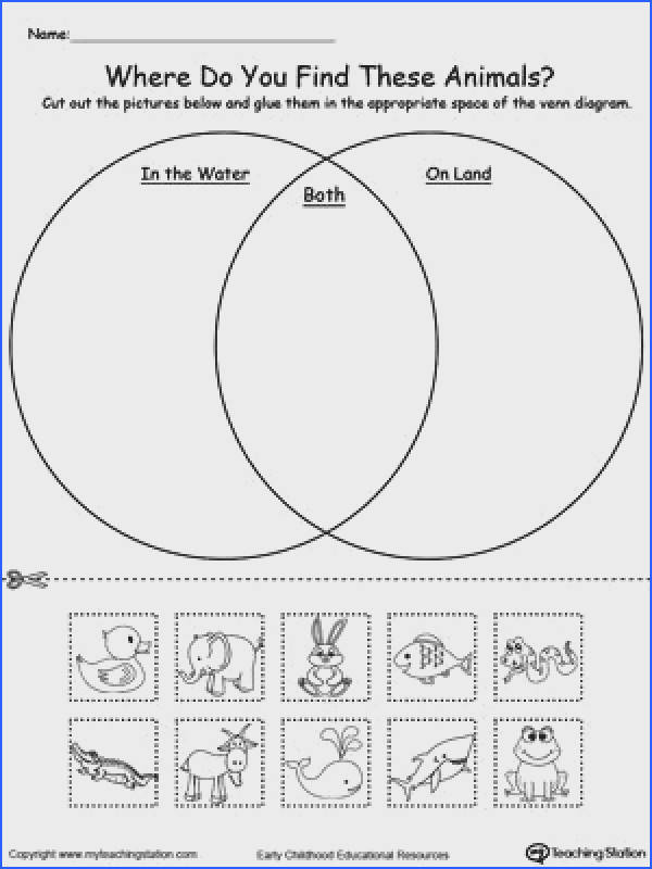 FREE Venn Diagram Animals In Water And Land Worksheet Practice sorting items into groups based on attributes by using this Venn Diagram printable