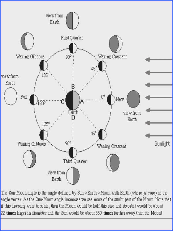 Email me for a worksheet that would go great with this Moon Phases Observation Board Mjkrech at yahoo dot