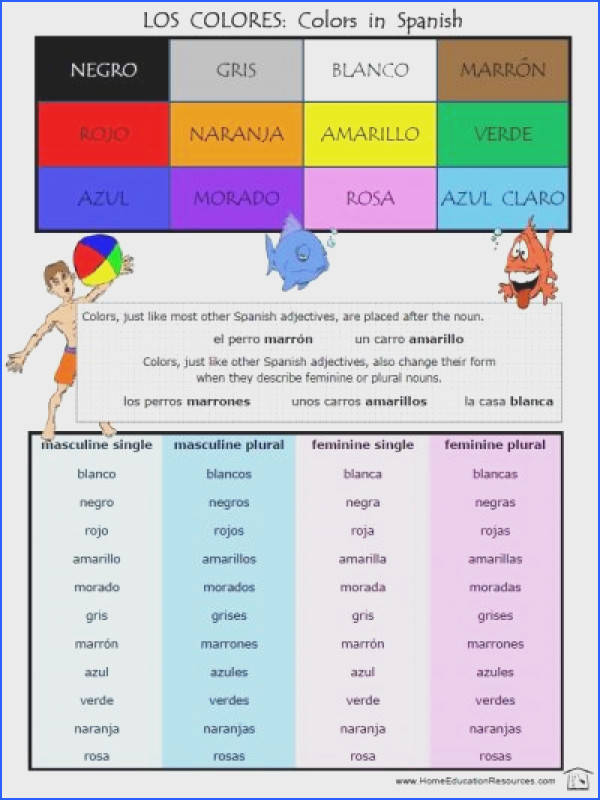 free colors in spanish los colores poster with masculine and feminine and singular and plural adjectives