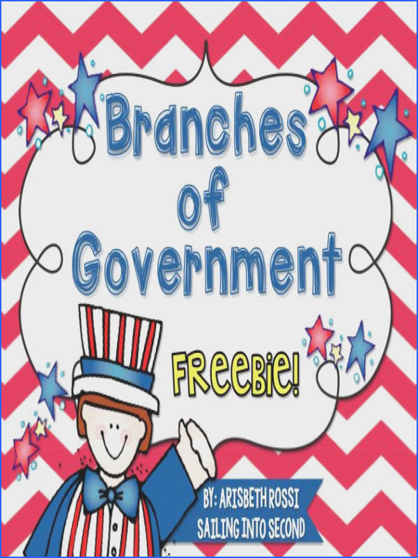 3 Branches of Government for Kids