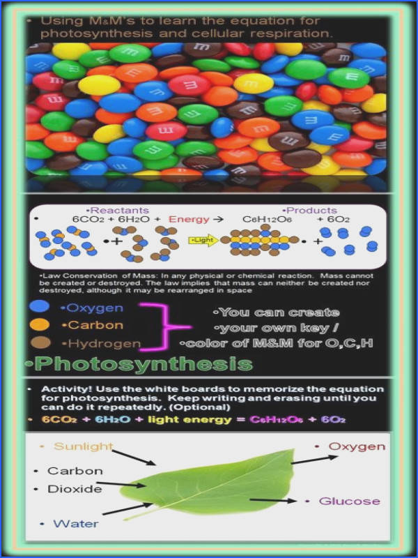 ▷ Law of Conservation of Mass Demonstration 10 50 Education Chemistry Pinterest