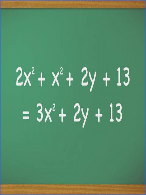 """In mathematics and especially algebra the term polynomial describes equations with more than two algebraic terms such as """"times three"""" or """"plus two"""" and"""
