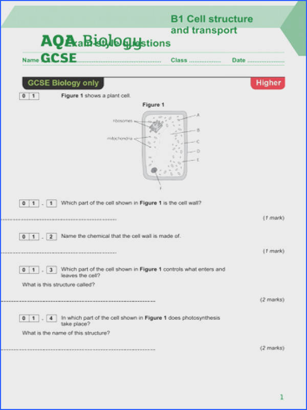 AQA Science Trilogy Biology Unit 1 Cell Structure and Transport Exam style questions HIGHER TIER by cinnamonwhirl Teaching Resources Tes