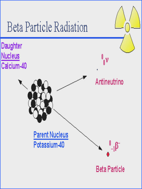 Beta Particles negatively charged particles identified as high speed electrons arise as a