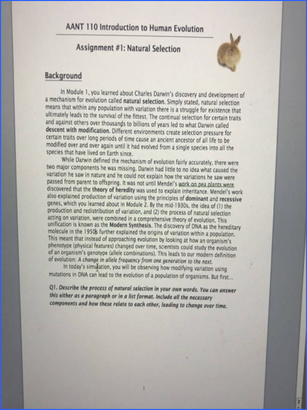 AANT 110 Introduction to Human Evolution Assignment 1 Natural Selection Background In Module 1