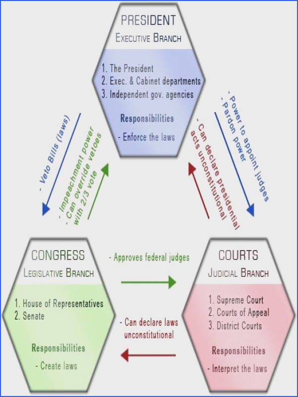 Image detail for these three branches of government interact and check each…