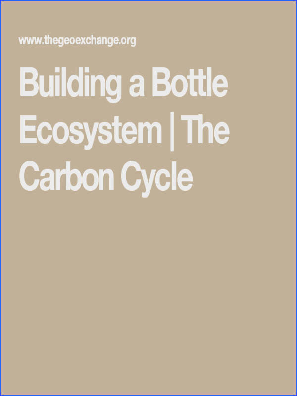 Building a Bottle Ecosystem