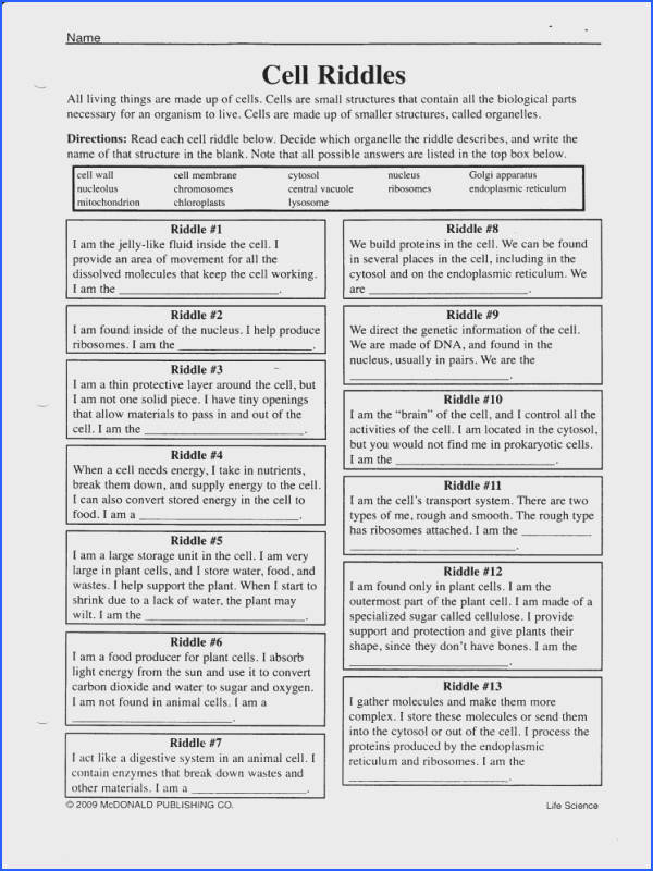 Cell Membrane Answer Key Cellular Transport Worksheet Answers Membrane Function Worksheet Answers The Cell Membrane Is posed