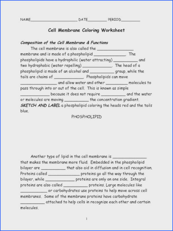 Cell Membrane Coloring Worksheet Beautiful Cell Membrane Coloring Worksheet 7th 9th Grade Worksheet