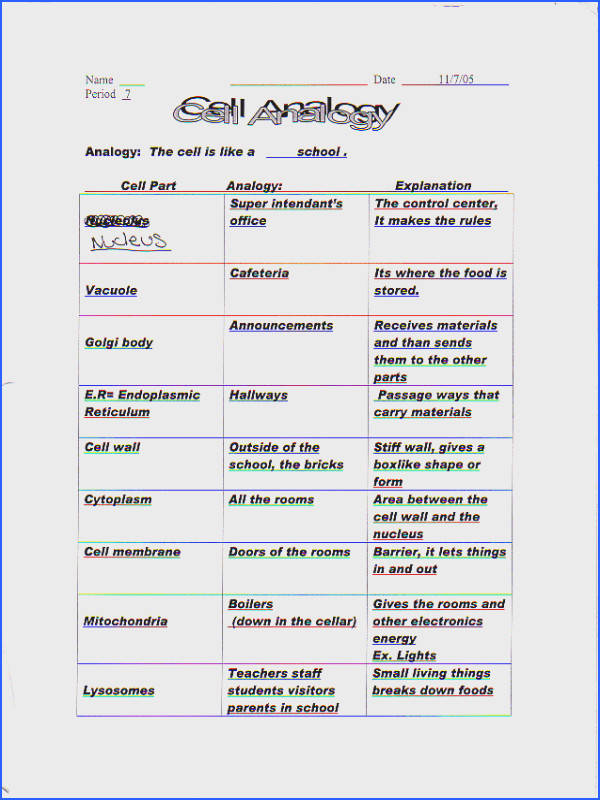 Cells And Organelles Worksheet Answers Worksheets for all Download and Worksheets