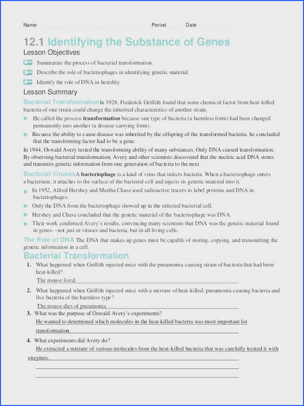 dna structure and replication worksheet answers plus name period stunning dna replication practice worksheet answer key