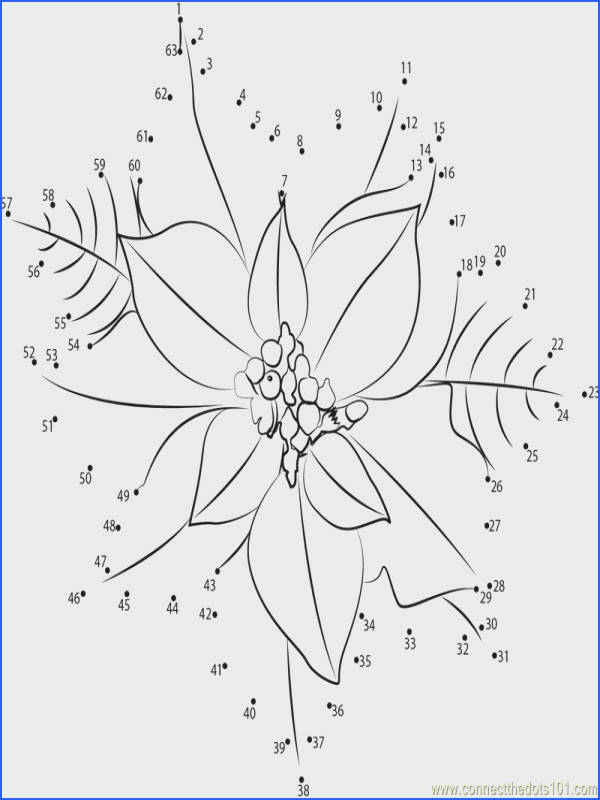 Connect the Dots Poinsettia Flower Flowers Poinsettia dot to