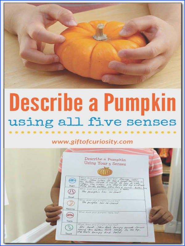Describe a pumpkin using all five senses This fall science activity challenges kids to describe
