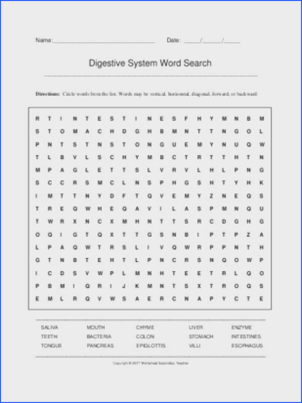 Digestive System Word Search Grades 7 12 with Key