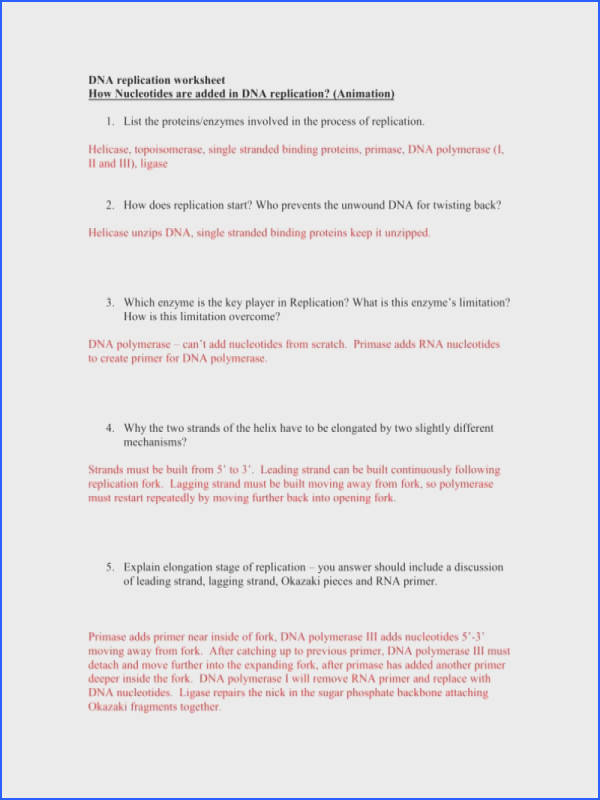 Dna Replication Worksheet Answers Free Printable Worksheets Page Kindergarten Worksheets With Dna Replication Worksheet
