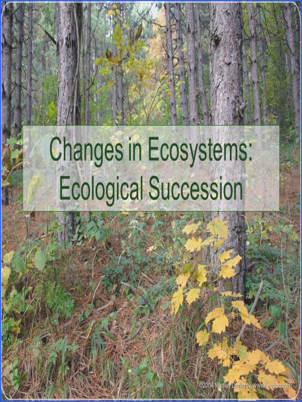 Changes in Ecosystems Ecological Succession