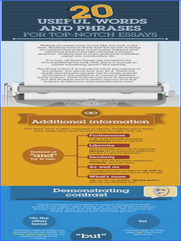 20 Useful Words and Phrases for Top Notch Essays Infographic