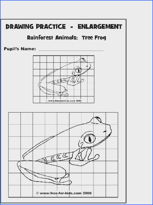 Grid drawing drawing warm up Example of a pleted worksheet Please click the link to the right to open the page in Adobe PDF format