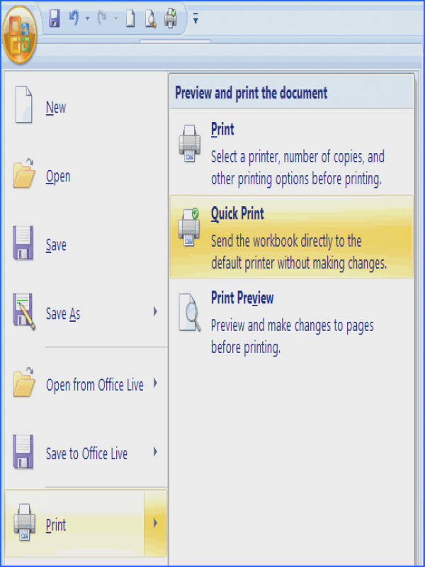 Overview Spreadsheet Print Options in Excel 2007 Part 1