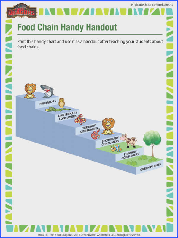 Food Chain Worksheet 4Th Grade Worksheets for all Download and Worksheets