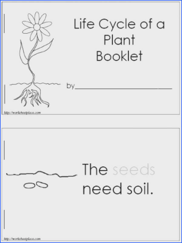 free plant booklet