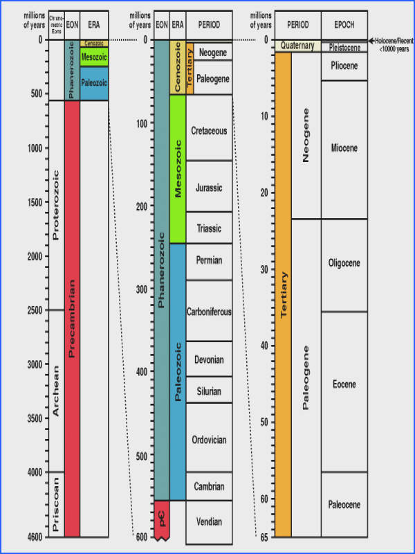 detailed time scale