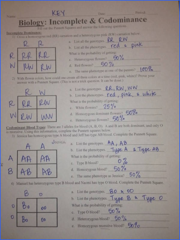 And Codominance Worksheet Delibertad – In plete and Codominance Worksheet