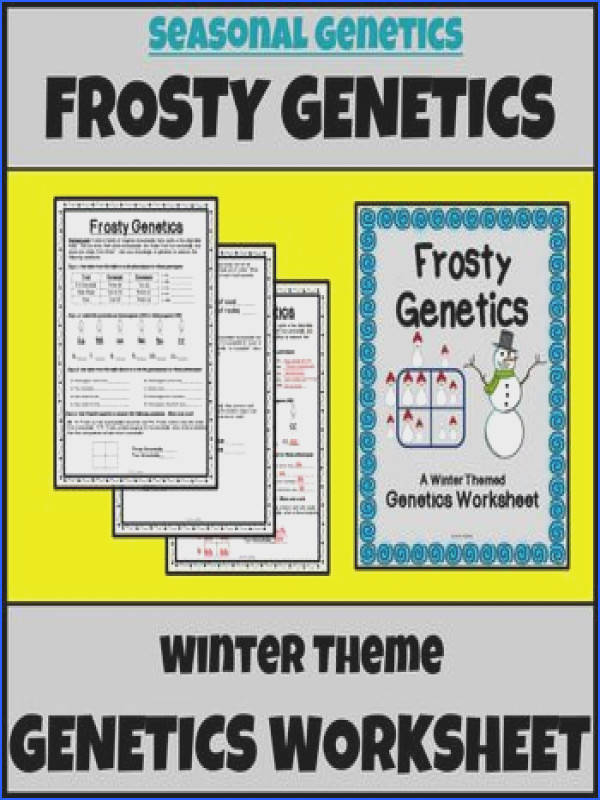 Do your kids need some genetics practice with Punnett Squares genotypes and phenotypes This adorable winter themed genetics worksheet is a great