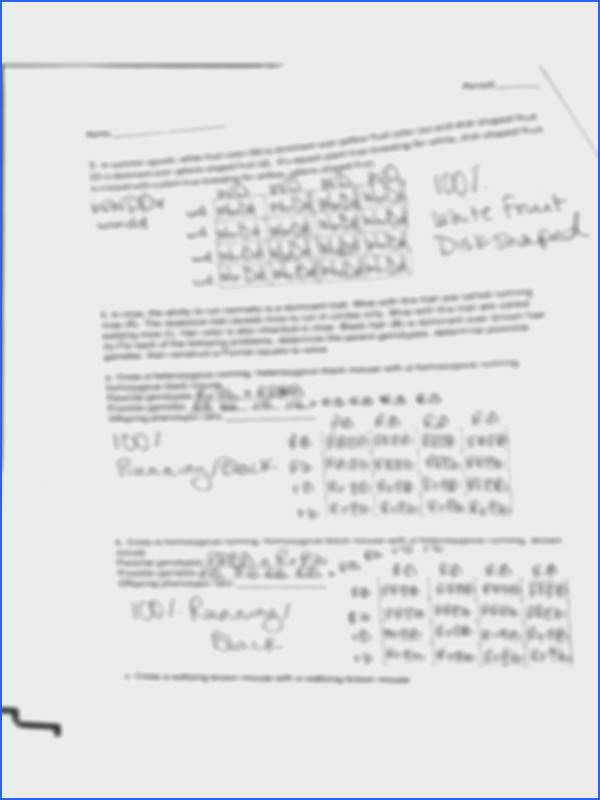 Background image of page 12