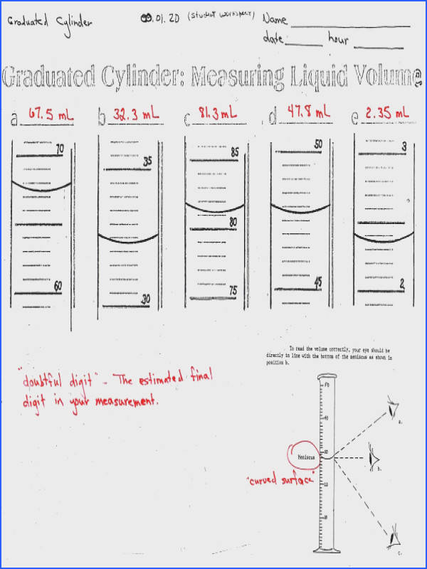 Levels organization Worksheet Answers New Biology I Cp Levels organization Worksheet Answers