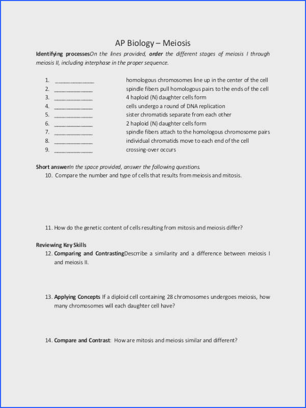 Meiosis Worksheet Answers Key Worksheets for all Download and Worksheets