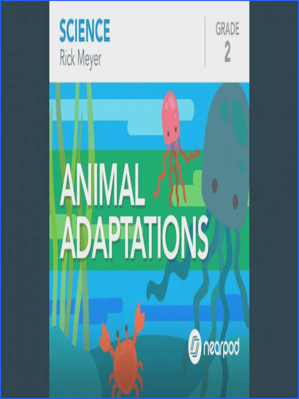 Modified animal adaptations lesson from Nearpod