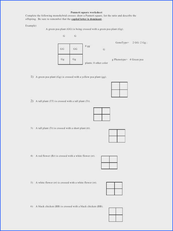 Monohybrid Cross Problems Worksheet with Answers Awesome Punnett Square Worksheet by Kpolson Via Slideshare Gallery