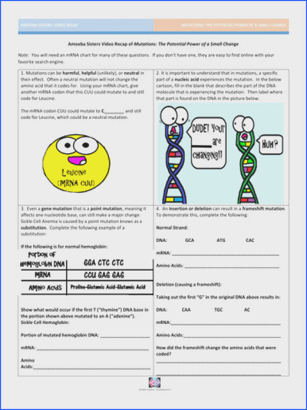 Mutations The Potential Power of a Small Change by AmoebaSisters Teaching Resources Tes