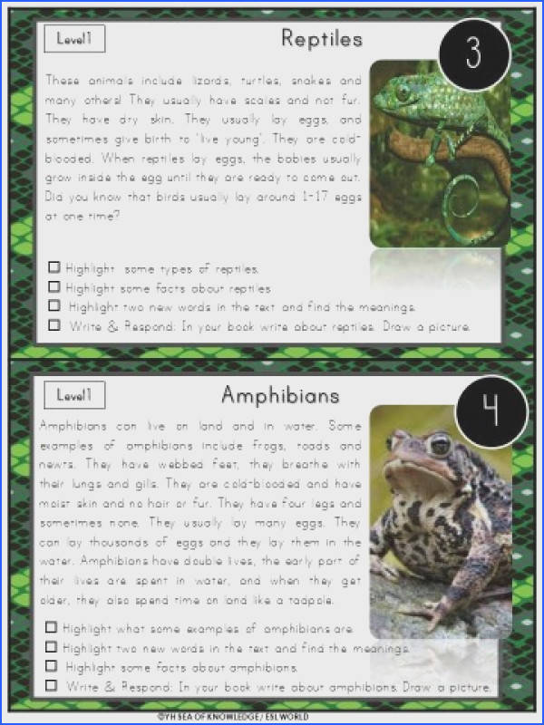 Classifying animals the texts included in this bundle are about classifying animals mammals