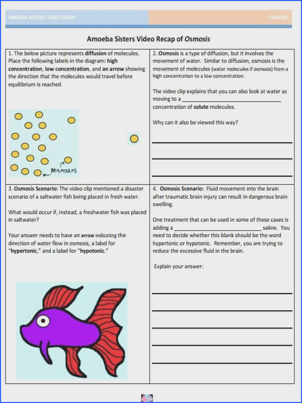 Osmosis handout made by the Amoeba Sisters to visit website and scroll down to