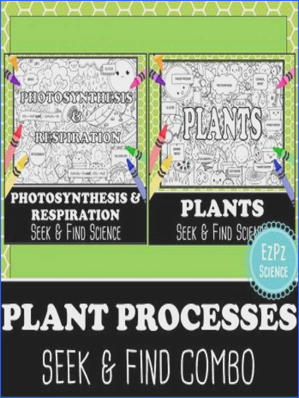 Plant Processes & synthesis Seek and Find Science Doodle Page bo