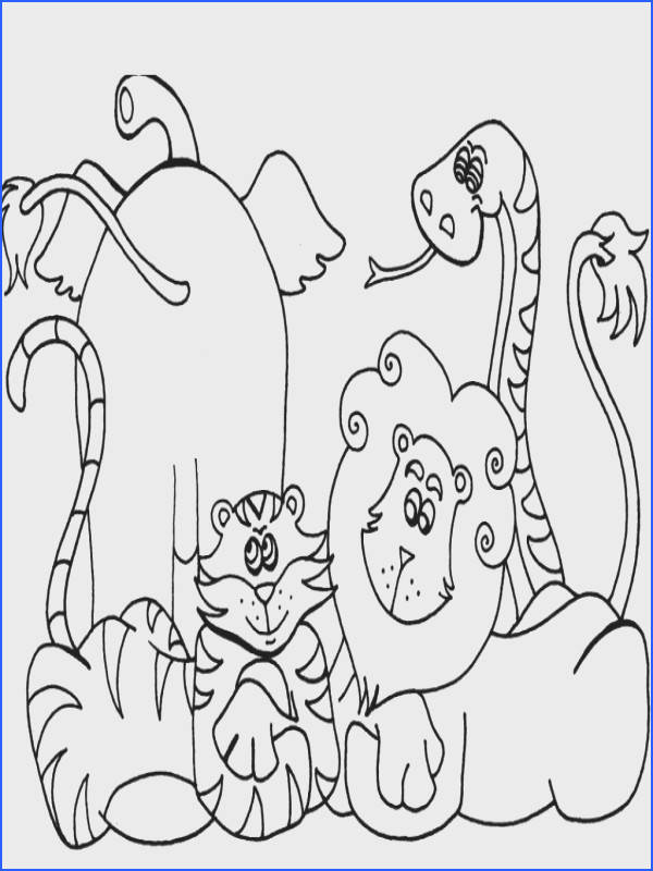 preschool coloring pages zoo