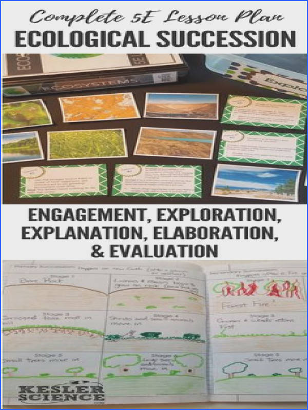 Ecological Succession 5E Lesson Plan ready to print and teach the entire ecosystems unit Includes word wall of vocabulary interactive science notebook