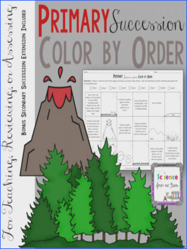 Primary Succession Color by Order for Notes Review or Assessment