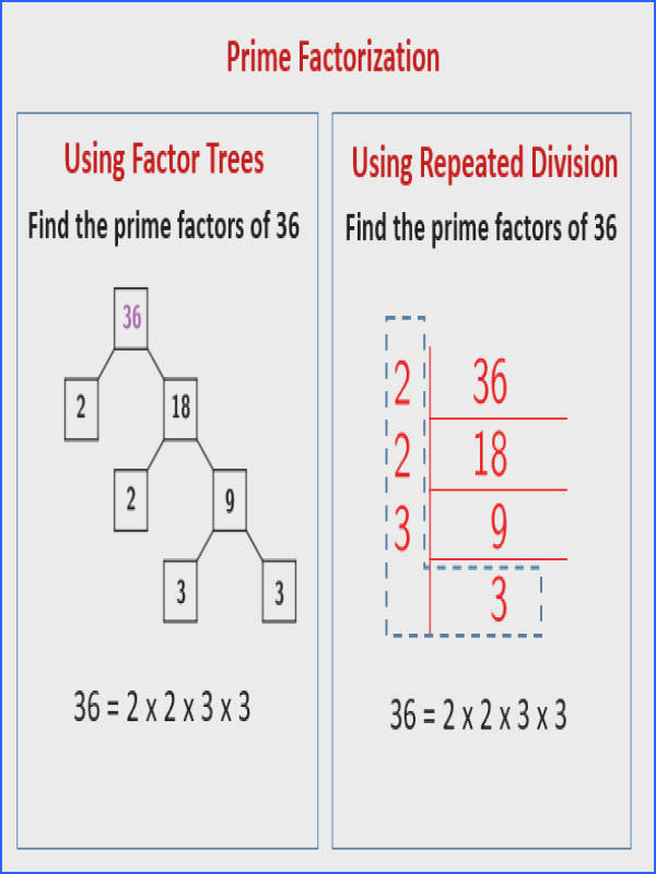 Prime Factorization using Repeated Division solutions examples videos