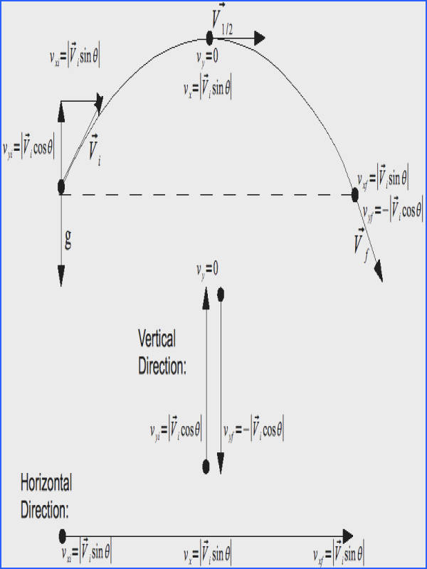 Break the Initial Velocity Vector into its ponents