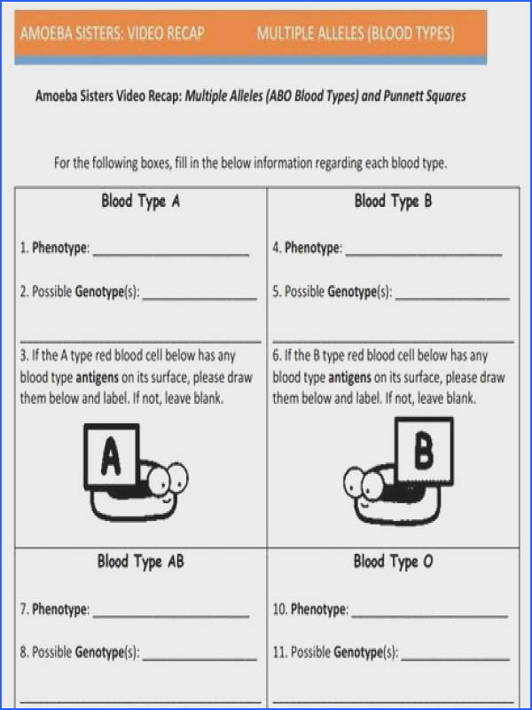 Multiple Allele And Punnett Squares Handout Made By The Amoeba
