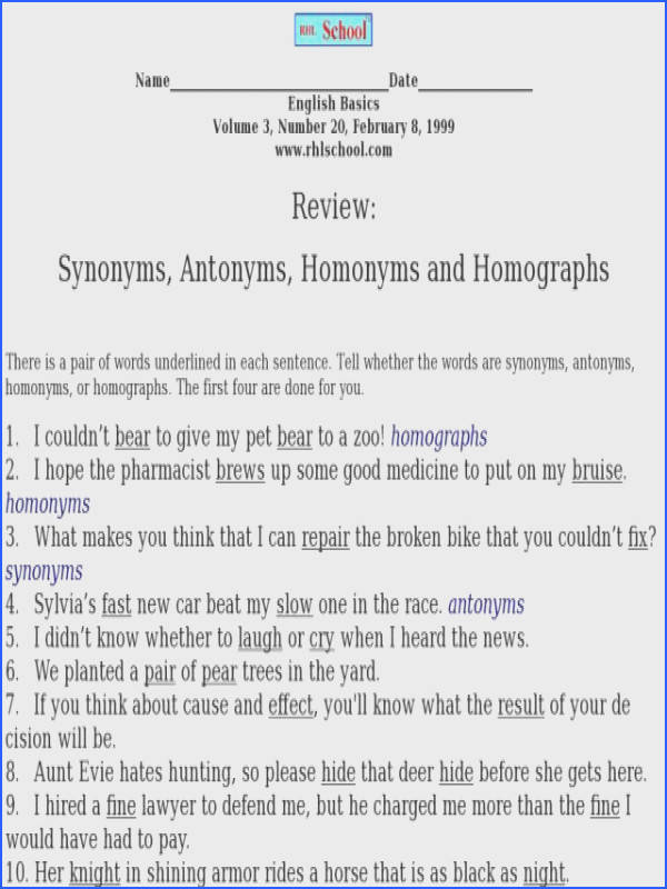 Review Synonyms Antonyms Homonyms and Homographs Worksheet for 2nd 3rd Grade
