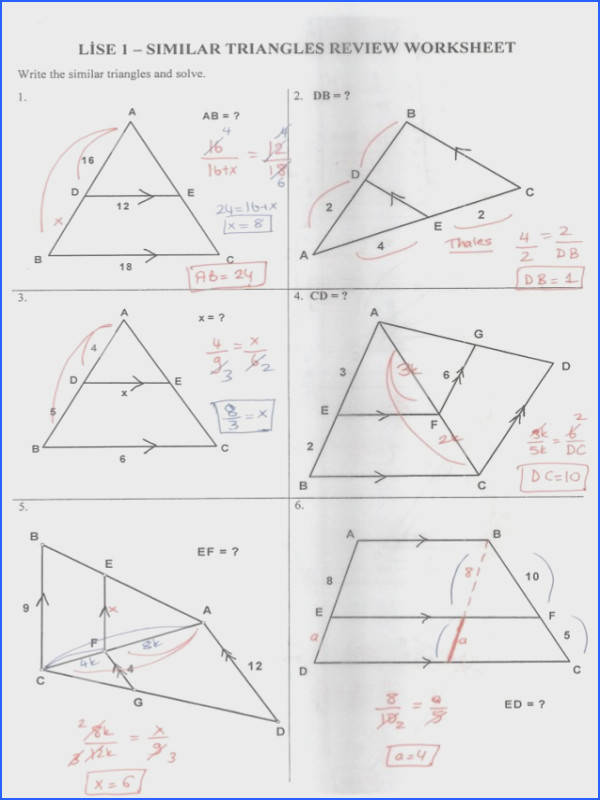 triangle review worksheet answer key